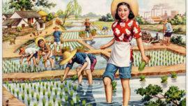 Une nouvelle vision pour les campagnes chinoises - 1953