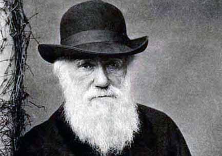 darwin-1.jpg
