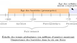 echelle-temps-geologiques.png