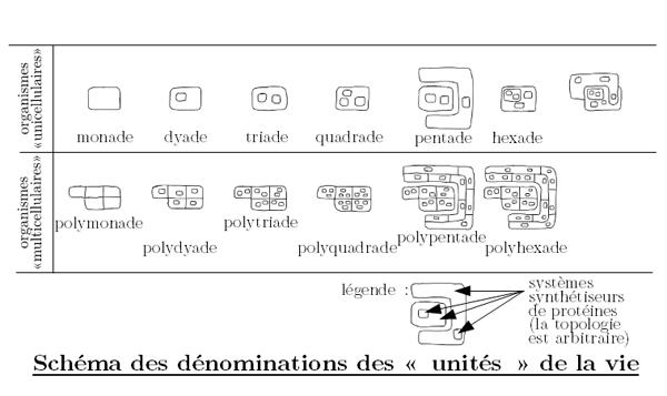 schema-monade-triade.png