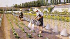 les-jardiniers.jpg