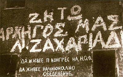 vive_zakariadis.jpg