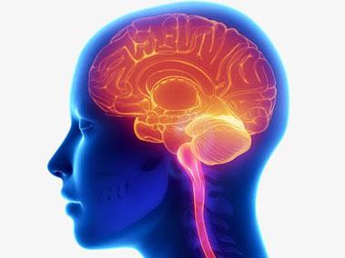 le-cerveau-l_ordinateur-2.jpg