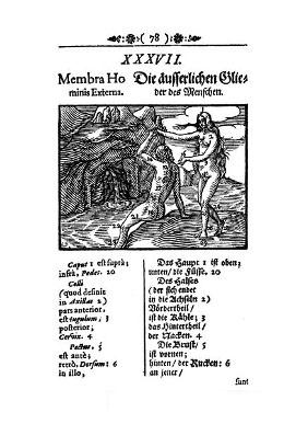 comenius-23.jpg