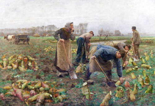 Émile Claus - De Bietenoogst (La Récolte des betteraves)