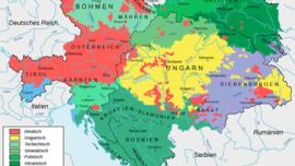 Les principales langues en Autriche-Hongrie : l'allemand, le hongrois, du côté slave le tchèque, le slovaque, le polonais, l'ukrainien, le slovène, le serbo-croate, enfin dans la famille latine le roumain et l'italien.